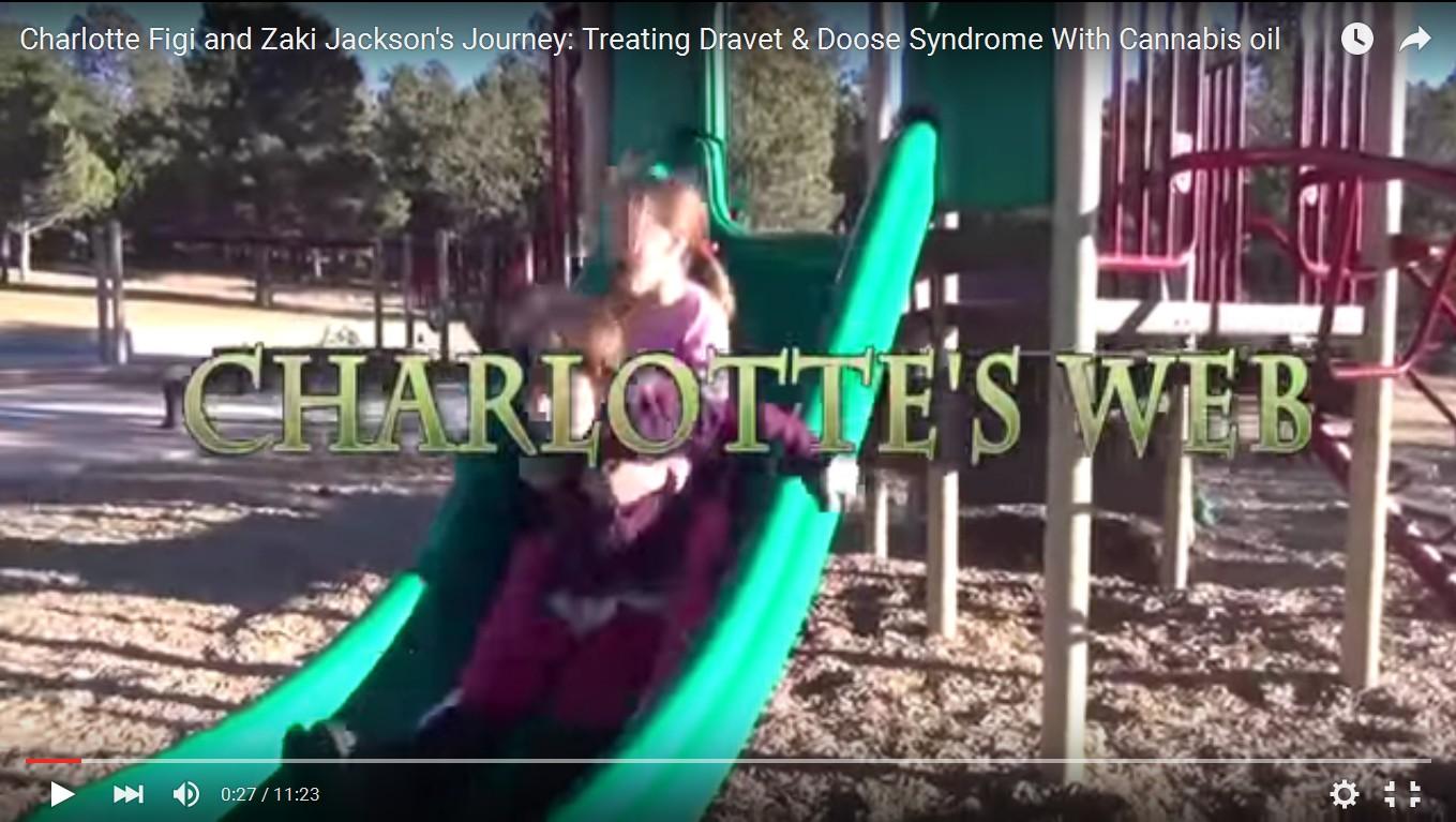 Charlotte's Web for Dravet's Syndrom